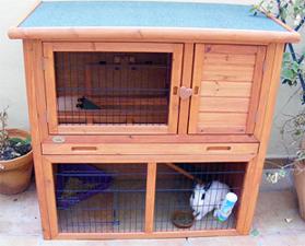 Coneadictos alojamiento jaula - Casas para conejos enanos ...